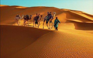 Отдых в Тунис/Сказка Туниса. Заказывайте Туры на сайте TourExpert