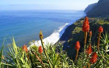 Отдых в Португалия/Мадейра. Заказывайте Туры на сайте TourExpert