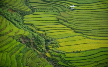 Туры на любой вкус с Texpert - увлекательные путешествия - заказывайте Отдых на о.Бали ● Индонезия