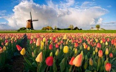 Отдых в Нидерланды/Необычный треугольник. Заказывайте Туры на сайте TourExpert