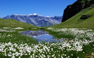 Отдых в Австрия/Гранд тур по Австрии. Заказывайте Туры на сайте TourExpert